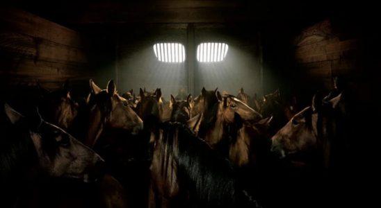 Лошадиные силы это не главное