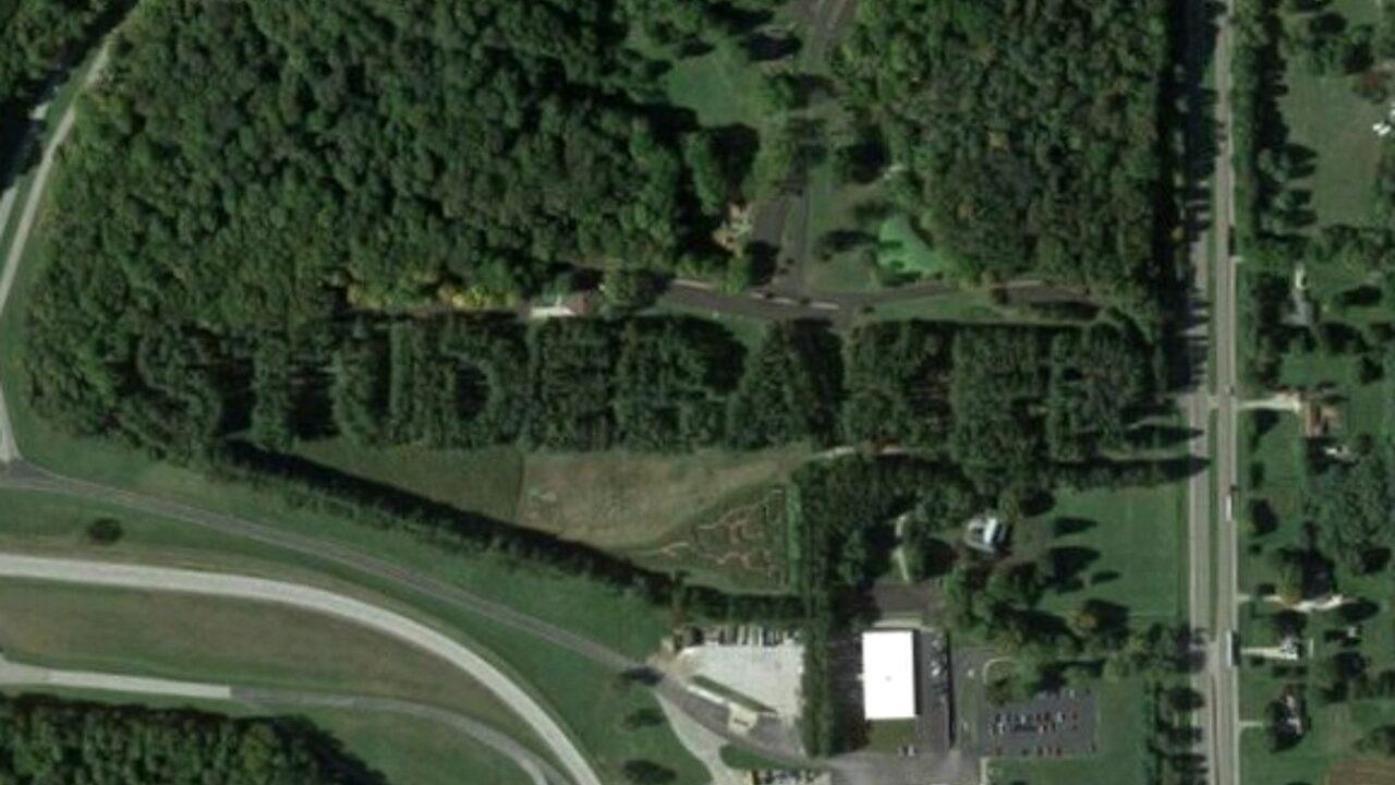 Памятник Studebaker из деревьев.