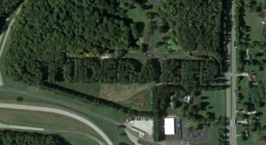 8 000 деревьев до сих пор рекламируют Studebaker